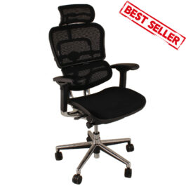 .Ergo Human Chair with head rest