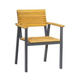 BENCH-Arm-Chair-ZA.267C-Robinia-Wood-300x300