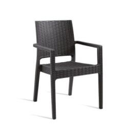 MINT-Arm-Chair-ZA.119C-Black-300x300