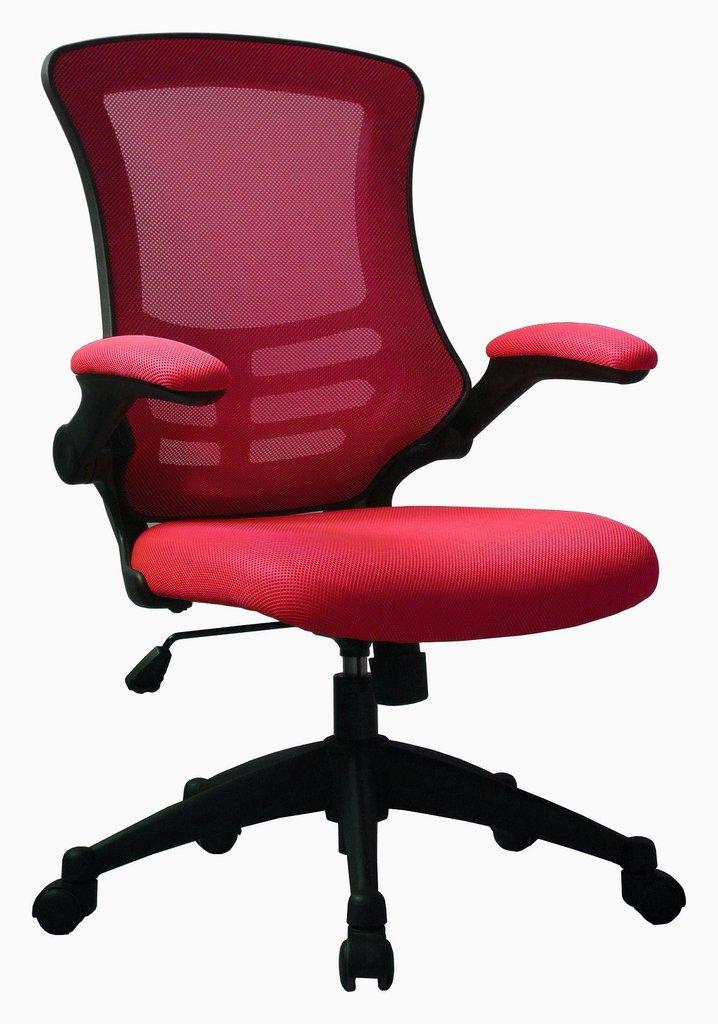 Luna Ergonomic Mesh Chair