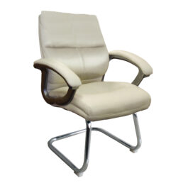 Greenwich (Cream) 2 Executive Medium Back Visitors Chair