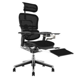 .Ergo Human Plus Luxury Mesh Chair With Notebook Stand
