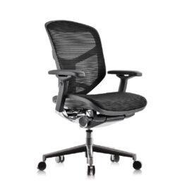 .Enjoy Mesh Office Chair